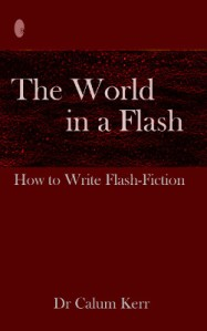 the world in a flash